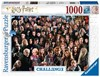 Picture of Challenge: Harry Potter (Jigsaw Puzzle 1000pc)